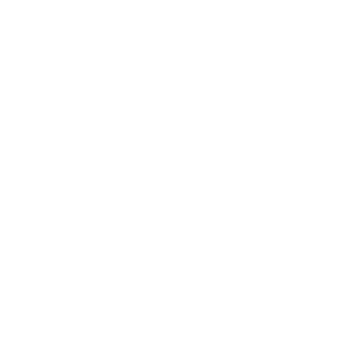 Mullenix Racing Engines